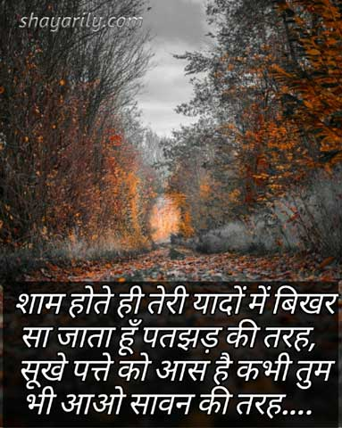 Miss You Shayari on Shaam