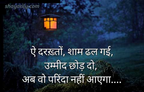 parinda shayari on shaam